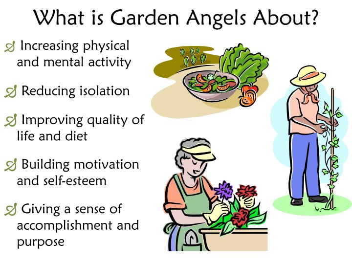 What is Garden Angels About?