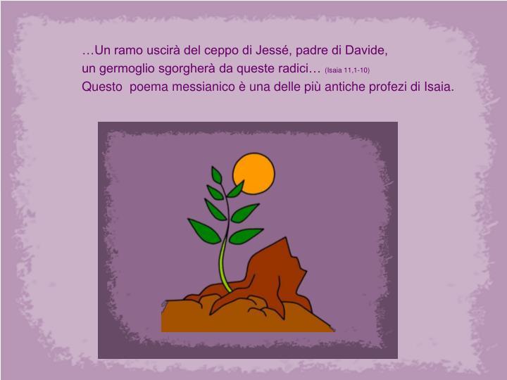 …Un ramo uscirà del ceppo di Jessé, padre di Davide,