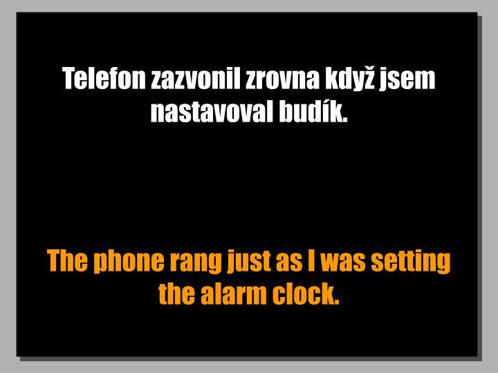 Telefon zazvonil zrovna kdy jsem nastavoval budk.