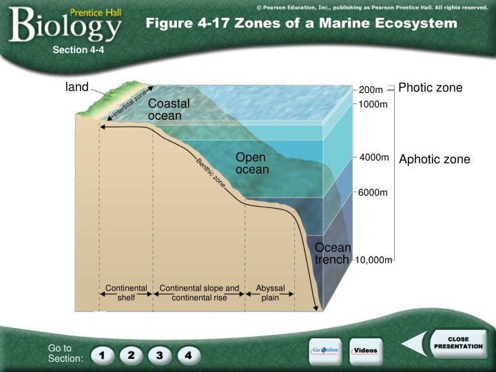 Figure 4-17 Zones of a Marine Ecosystem