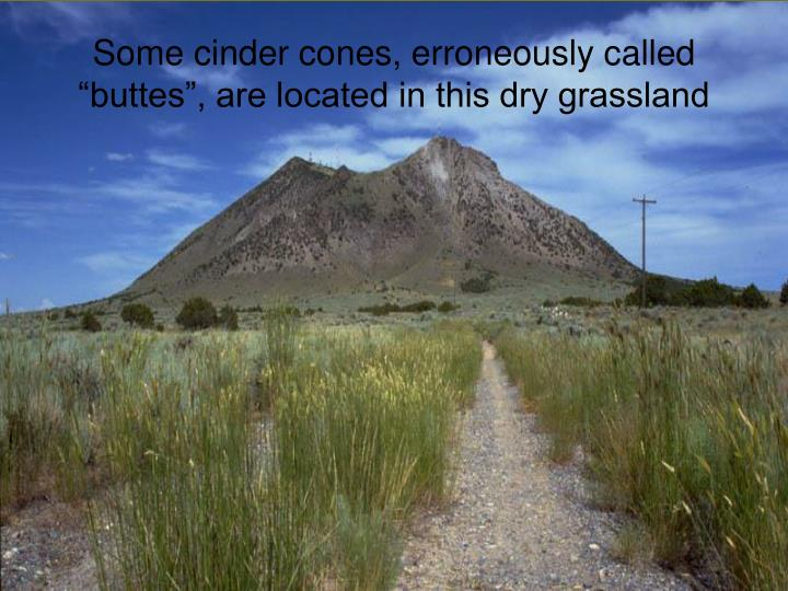 """Some cinder cones, erroneously called """"buttes"""", are located in this dry grassland"""
