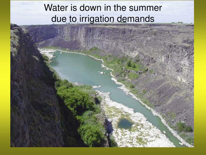 Water is down in the summer