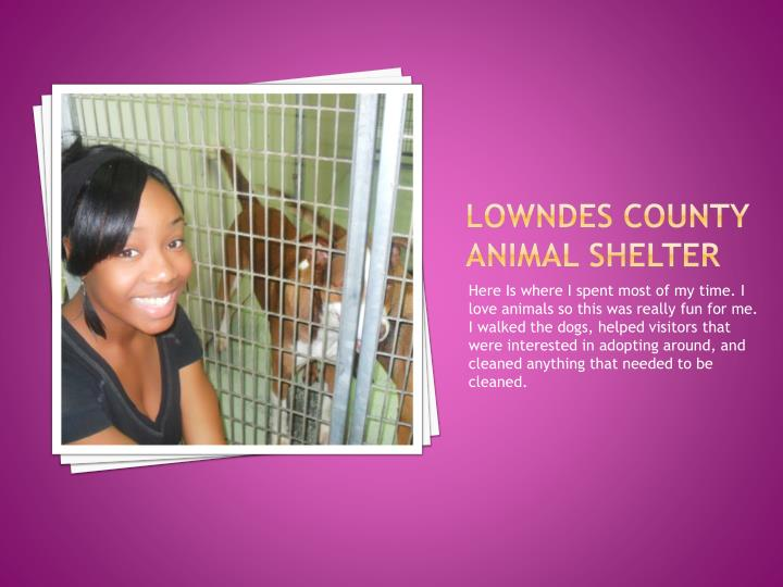Lowndes County Animal Shelter