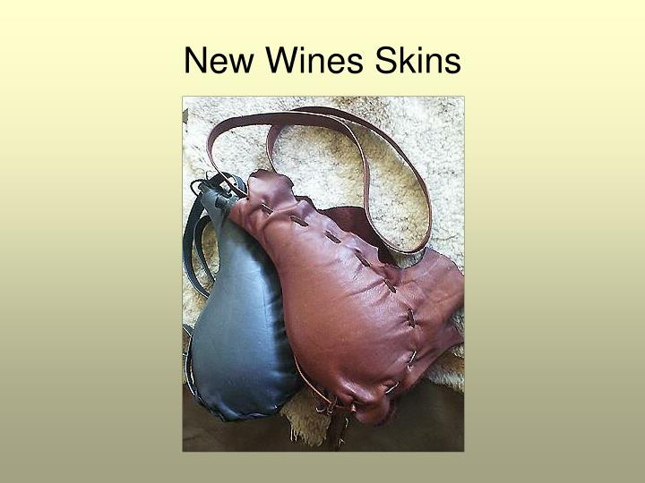 New Wines Skins