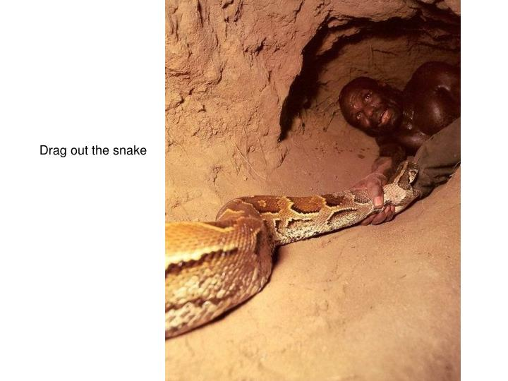 Drag out the snake