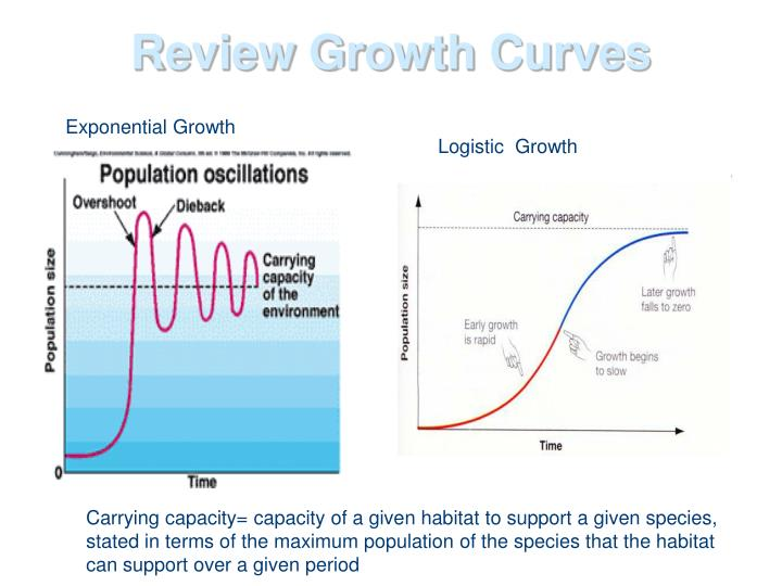 Review Growth Curves