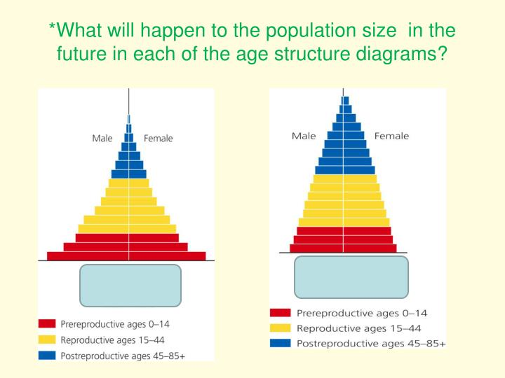 *What will happen to the population size  in the future in each of the age structure diagrams?