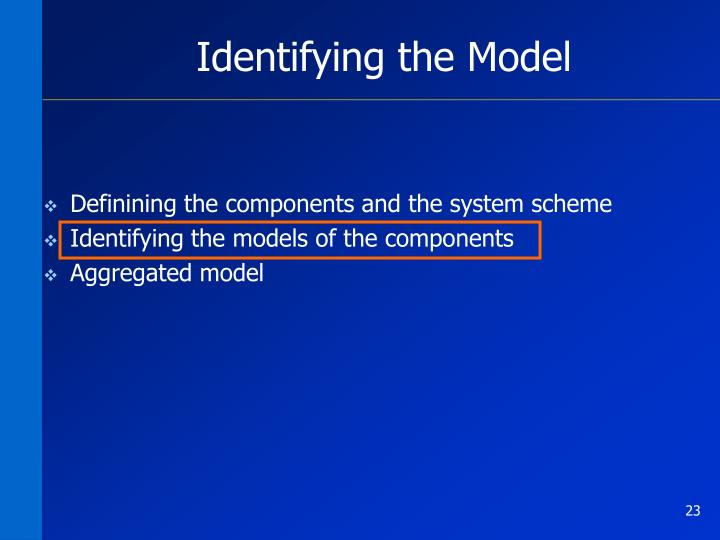 Identifying the Model