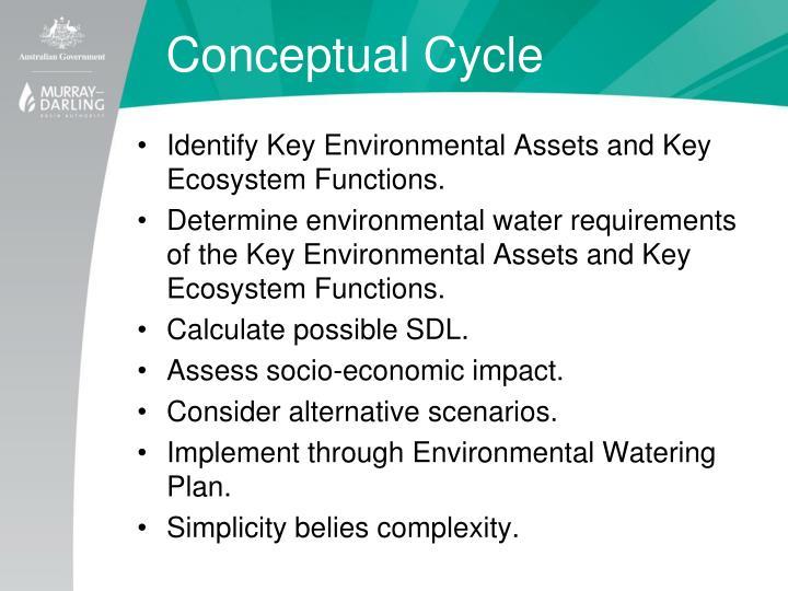 Conceptual Cycle