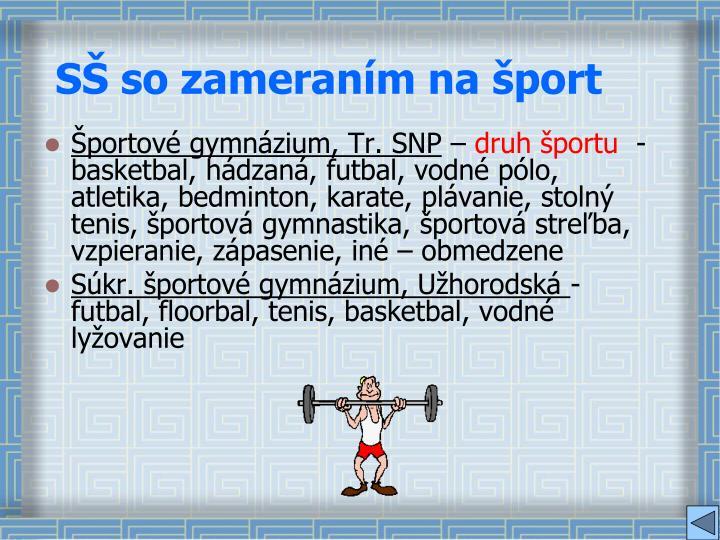 SŠ so zameraním na šport