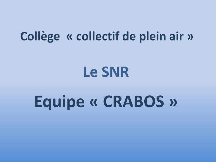 Collège  «collectif de plein air»