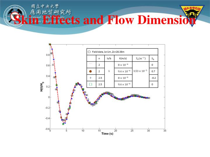 Skin Effects and Flow Dimension
