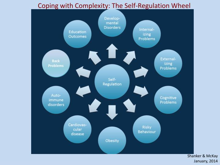 Coping with Complexity: The Self-Regulation Wheel