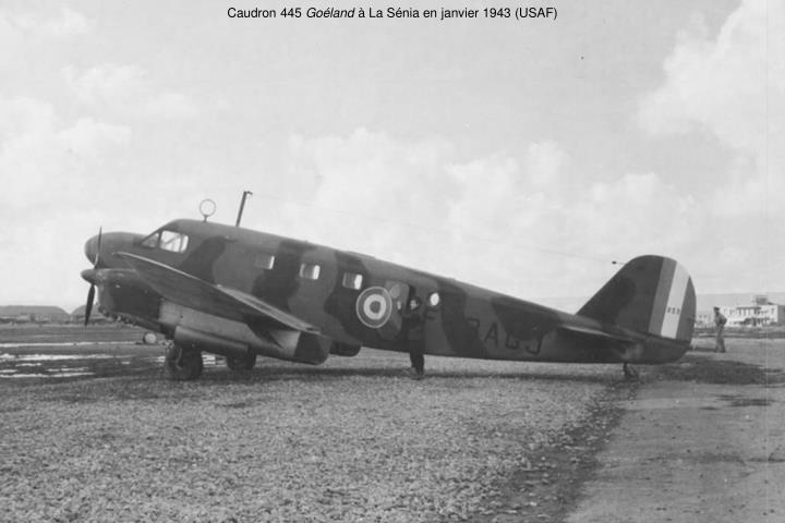 Caudron 445