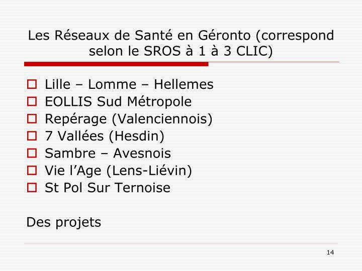 Les Réseaux de Santé en Géronto (correspond selon le SROS à 1 à 3 CLIC)