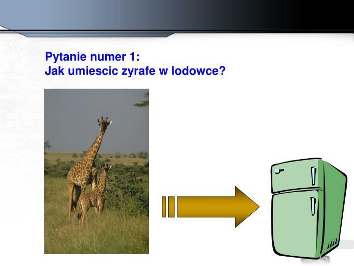 Pytanie numer 1: