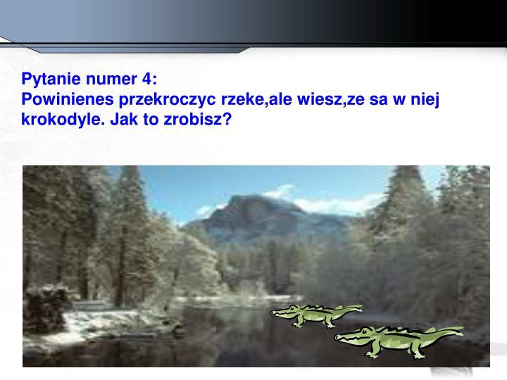 Pytanie numer 4: