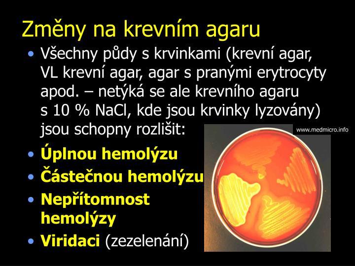 Změny na krevním agaru