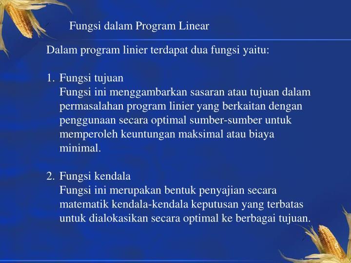 Fungsi dalam Program Linear