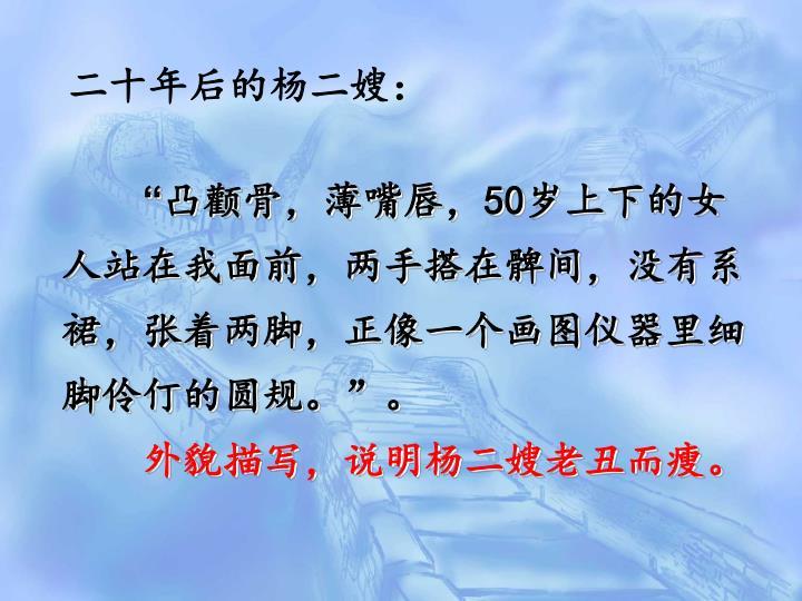 二十年后的杨二嫂: