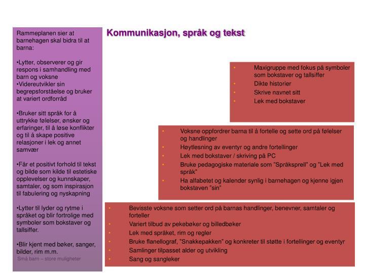 Kommunikasjon, språk og tekst