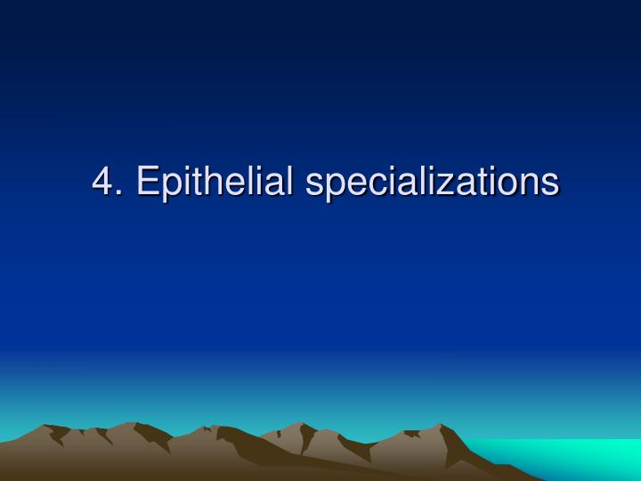4. Epithelial specializations