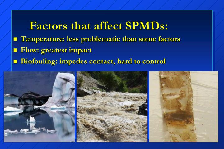 Factors that affect SPMDs: