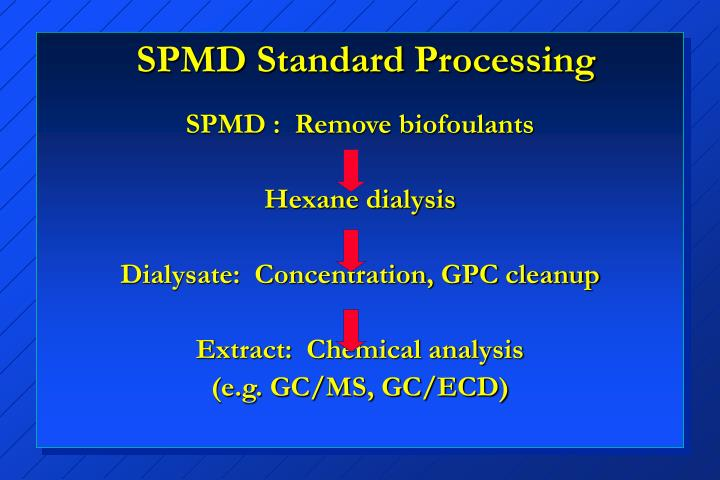 SPMD Standard Processing