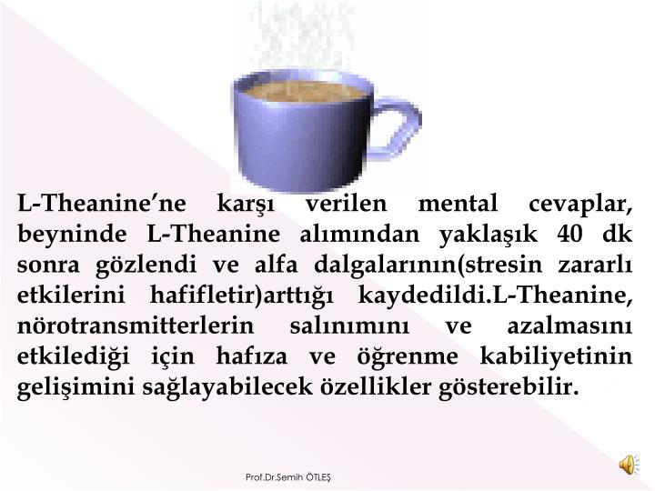 L-Theanine'ne karşı verilen mental cevaplar, beynin