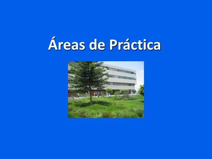 Áreas de Práctica