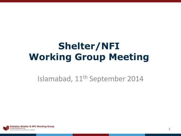 Shelter nfi working group meeting