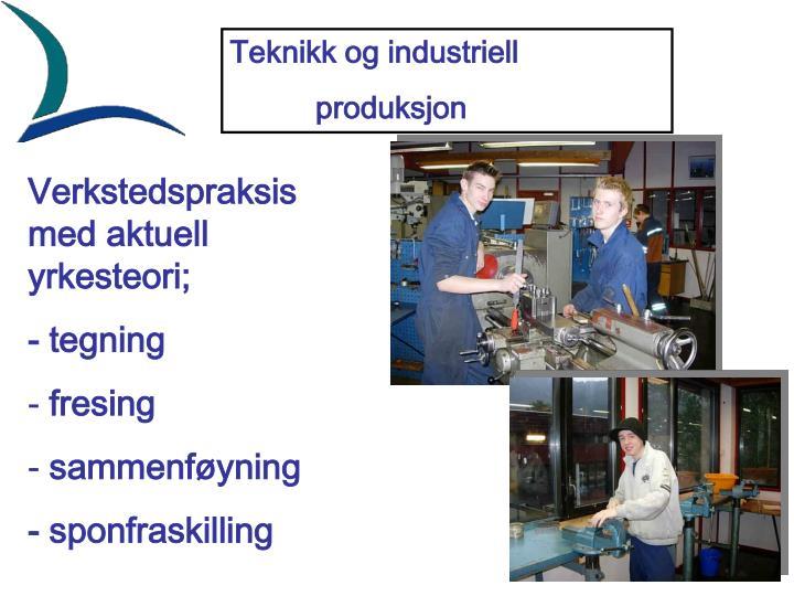 Teknikk og industriell