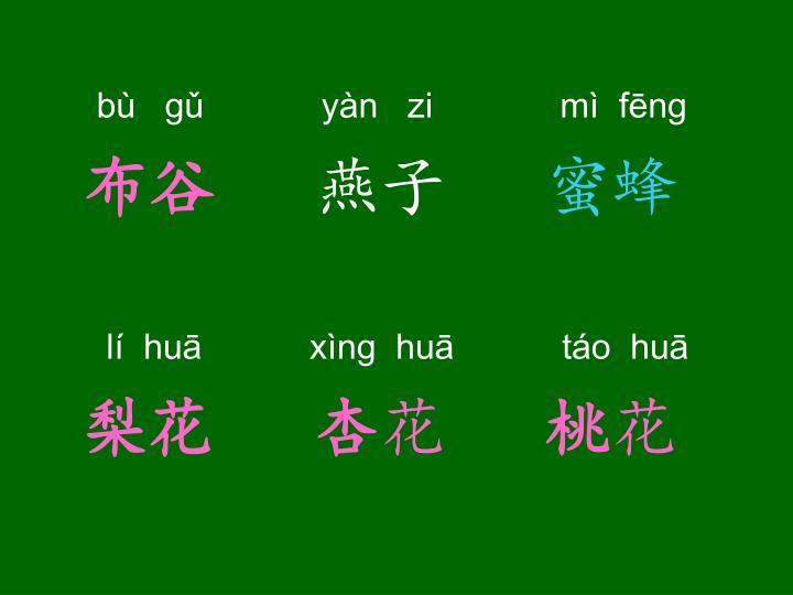 bù   gǔ            yàn   zi             mì  fēng