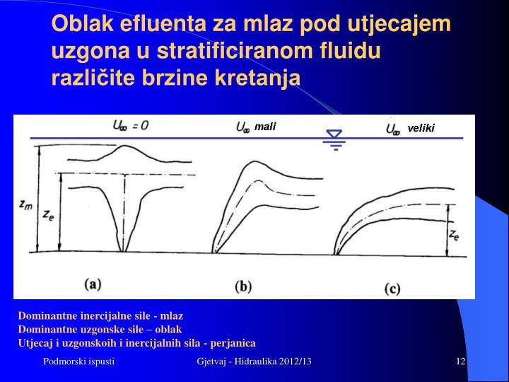 Oblak efluenta za mlaz pod utjecajem uzgona u stratificiranom fluidu