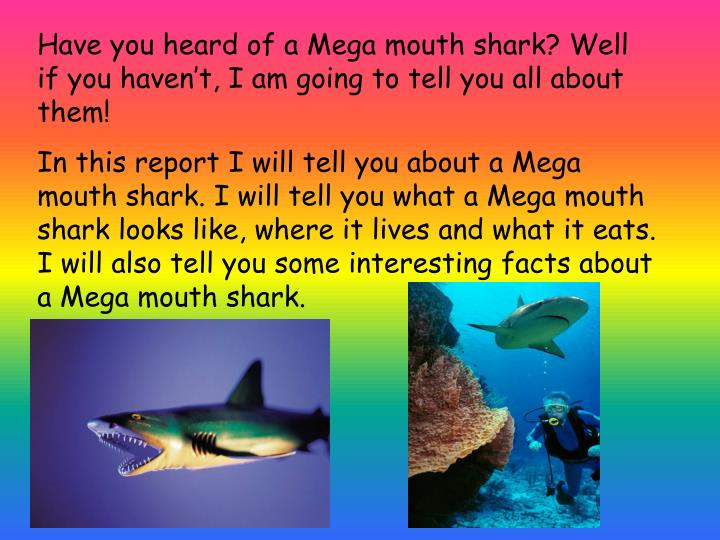 Have you heard of a Mega mouth shark? Well if you haven't, I am going to tell you all about them!