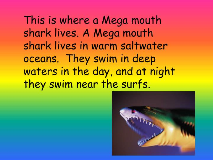 This is where a Mega mouth shark lives. A Mega mouth shark lives in warm saltwater oceans.  They swim in deep waters in the day, and at night they swim near the surfs.