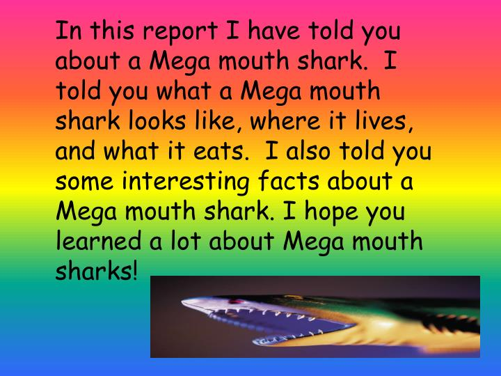 In this report I have told you about a Mega mouth shark.  I told you what a Mega mouth shark looks like, where it lives, and what it eats.  I also told you some interesting facts about a Mega mouth shark. I hope you learned a lot about Mega mouth sharks!