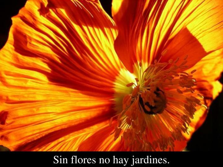 Sin flores no hay jardines.