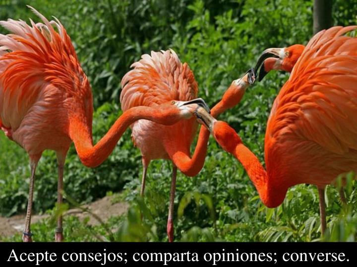Acepte consejos; comparta opiniones; converse.