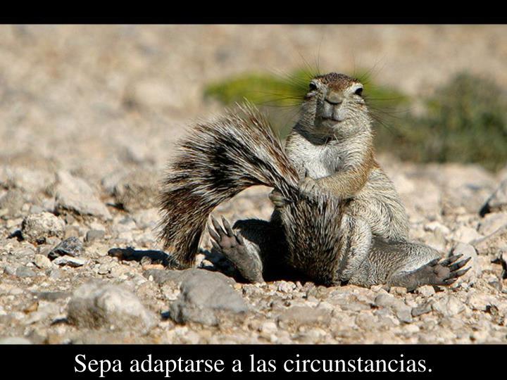 Sepa adaptarse a las circunstancias.