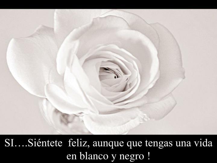 SI….Siéntete  feliz, aunque que tengas una vida en blanco y negro !