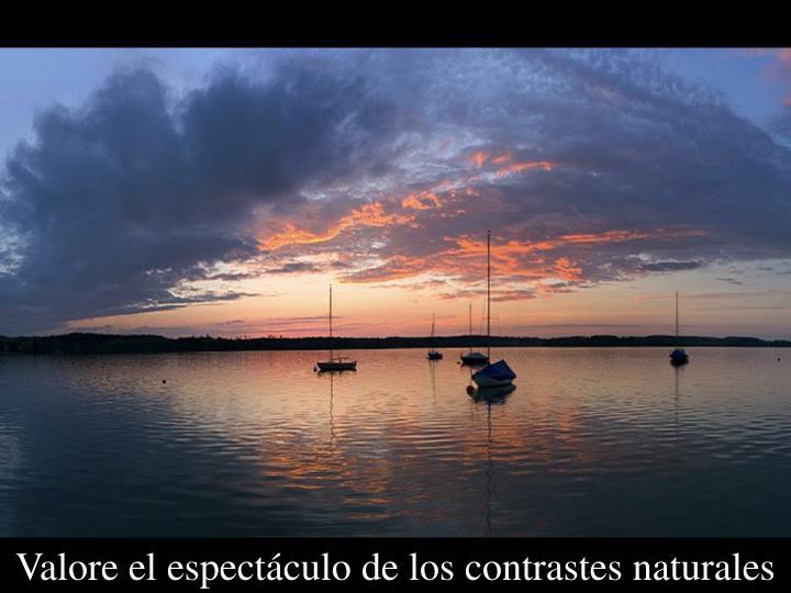 Valore el espectáculo de los contrastes naturales