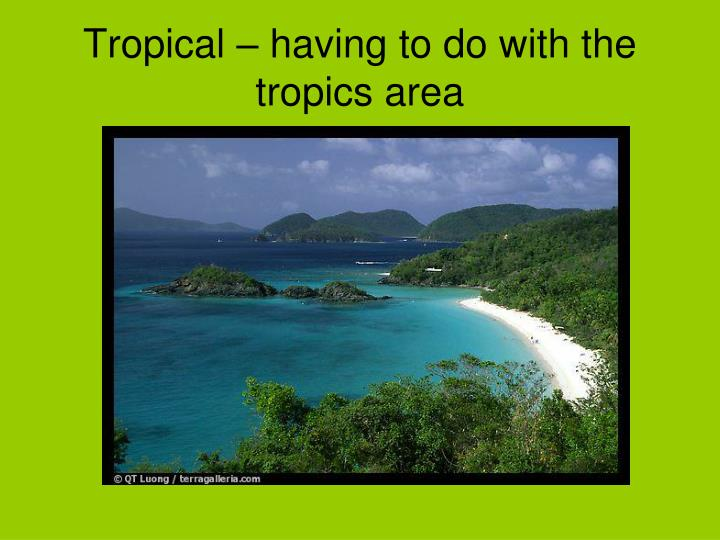 Tropical – having to do with the tropics area