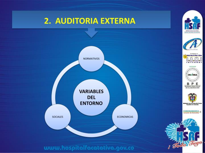2.  AUDITORIA EXTERNA