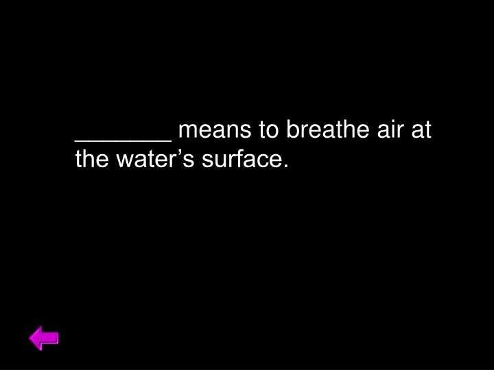 _______ means to breathe air at the water's surface.