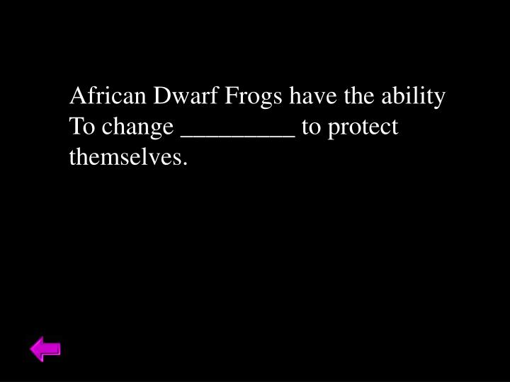 African Dwarf Frogs have the ability