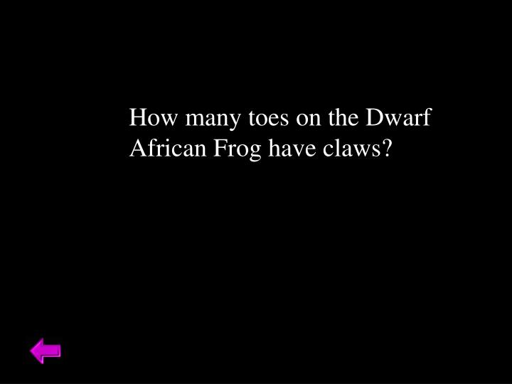 How many toes on the Dwarf