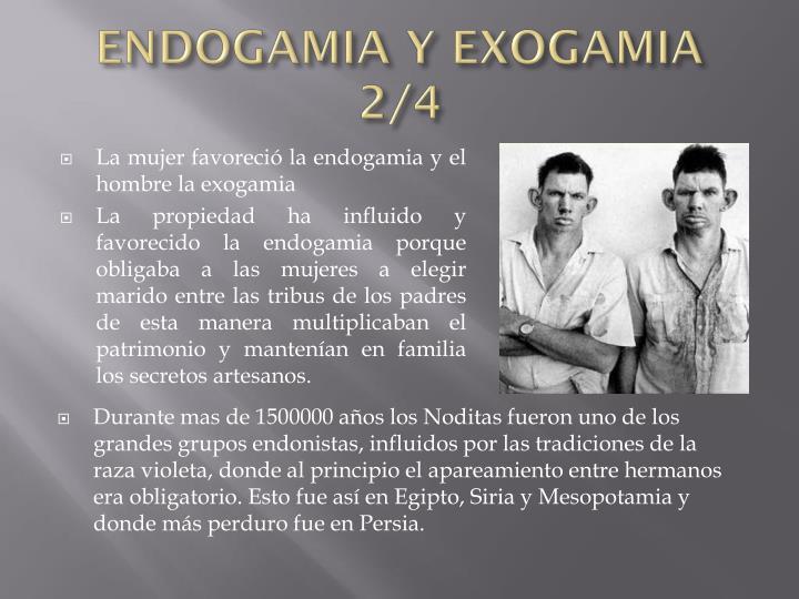 ENDOGAMIA Y EXOGAMIA 2/4