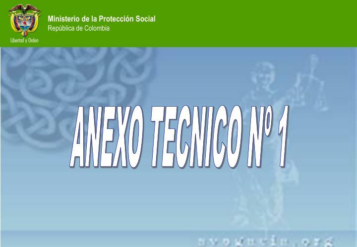 ANEXO TECNICO Nº 1