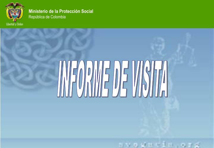 INFORME DE VISITA